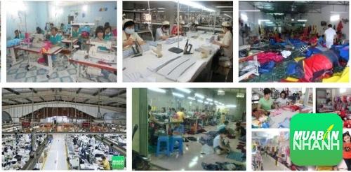Tìm cho mình các nguồn hàng xưởng tại Việt Nam
